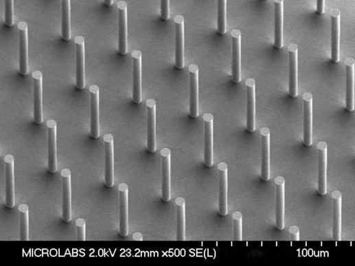 Sensera's 7µm micropillars RE.jpg