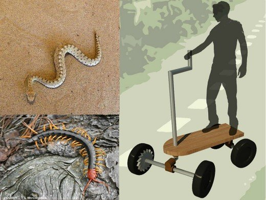 Transport systems and materials inspired by nature - CMM