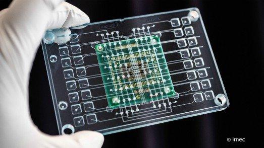 Image 2 organ-on-chip-screen001 re.jpg